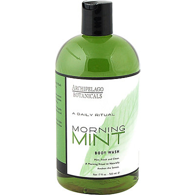 ArchipelagoA Daily Ritual Morning Mint Body Wash