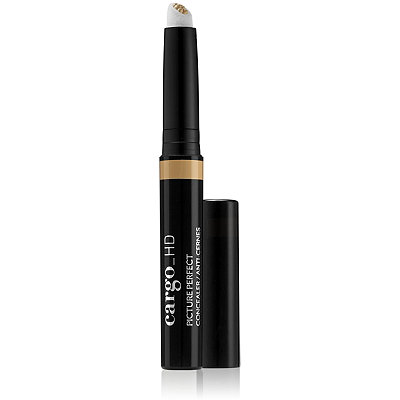 Online Only HD Picture Perfect Concealer