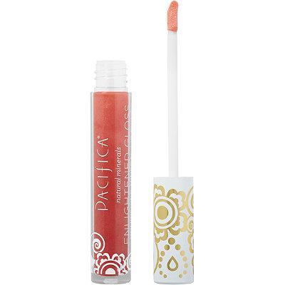 Enlightened Gloss Nourishing Mineral Lip Shine