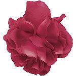 KarinaSalon Clip Sweet Floral (Asst)