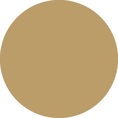24kt Stilettos (metallic gold)