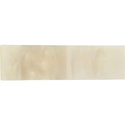 RivieraLarge Acrylic Salon Clip