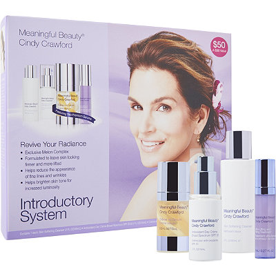 Meaningful Beauty Advanced Introductory System