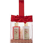 Candy Cane Satin Bow Gift Set