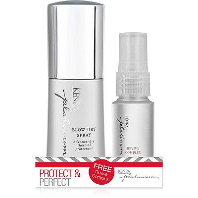 Kenra ProfessionalPlatinum Protect %26 Perfect