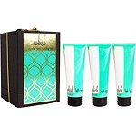 Online Only Vanilla Mint Holiday Gift Set