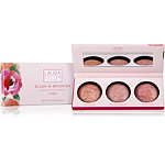 Online Only Baked Blush-n-Brighten Palette