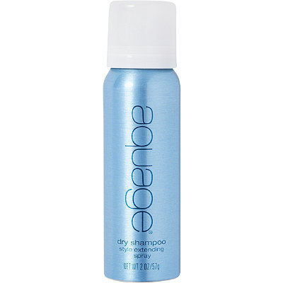 Travel Size Dry Shampoo