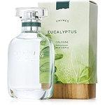 Eucalyptus Cologne