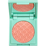 Online Only Mint Pressed Powder Blush Collection