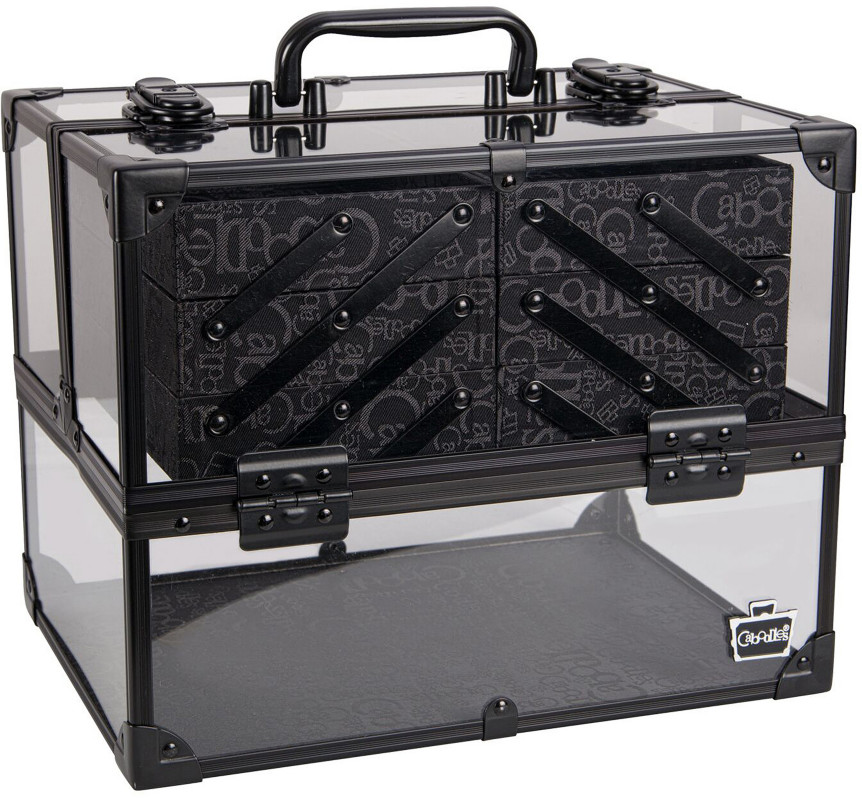 013b2bd689 Caboodles Neat Freak Acrylic Train Case