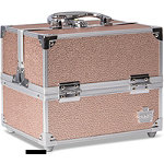 Caboodles Rose Gold Adored Train Case