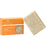 Frederick Benjamin Peppermint Soap Invigorating Cleanser