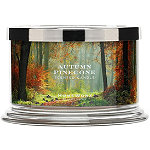 HomeWorx Autumn Pinecone 4 Wick Candle