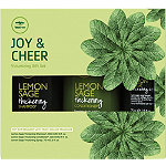 Paul Mitchell Online Only Tea Tree Joy & Cheer Volumizing Holiday Gift Set