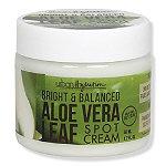 Urban Hydration Aloe Vera Leaf Spot Cream